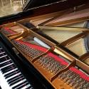 piano_tune